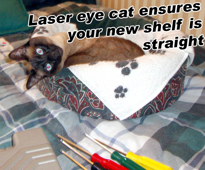 Laser eye cat ensures your shelf is straight