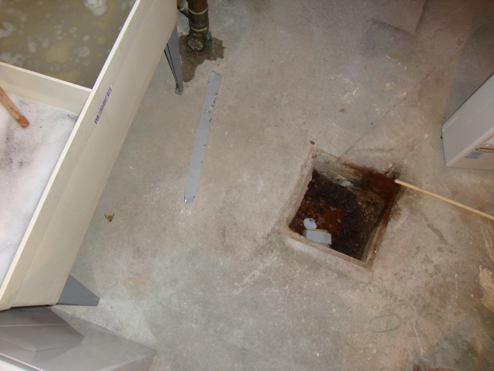 Help sewer backup starting plumbing diy home for Sewer backup in house